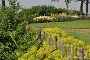 beplanting-met-kastanje-houten-hekwerk
