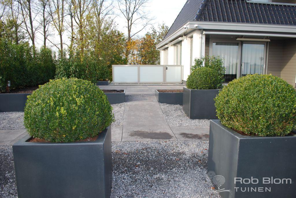 Aanleg moderne tuin for Moderne waterpartijen tuin