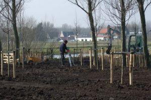 aanleg-tuin-rondom-zorgboerderij-nooitgedacht-in-nieuwerkerk-aan-de-ijssel